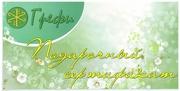 Подарочный сертификат на косметический массаж и коррекцию фигуры